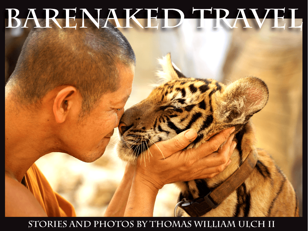 barenaked travel book cover buddhist monk with tiger